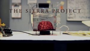 The Sierra Project